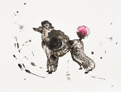 Painting - Poodle by Zaira Dzhaubaeva