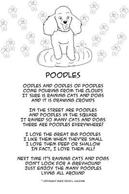 Drawing - Poodles by John Haldane