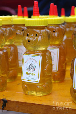 Pooh Honey Art Print by David Bearden