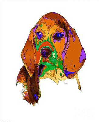 Digital Art - Pookie. Pet Series by Rafael Salazar