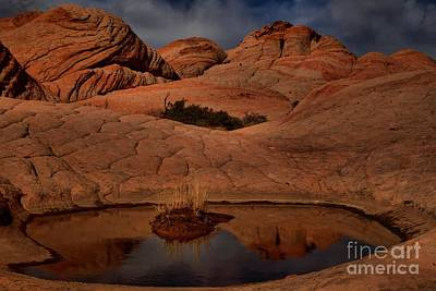 Photograph - Pool In The Desert by Adam Jewell