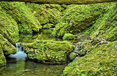 Photograph - Pools Along Moine by Bonfire Photography