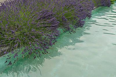 Photograph - Poolside Aromatherapy by Georgia Mizuleva
