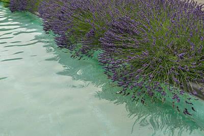 Photograph - Poolside Aromatherapy - Right by Georgia Mizuleva