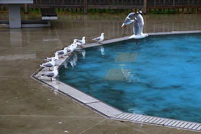 Photograph - Poolside In The Rain by Nareeta Martin