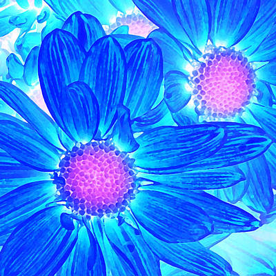Daisies Photograph - Pop Art Daisies 6 by Amy Vangsgard