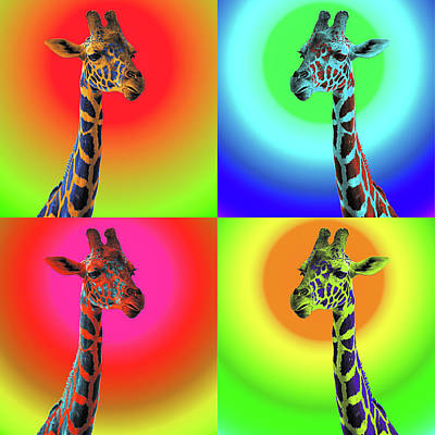 Photograph - Pop Art Giraffe by James Sage