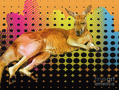 Photograph - Pop Art Kangaroo by Melissa Messick