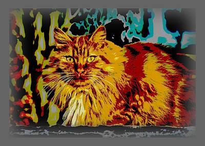Photograph - Pop Art Orange Tabby Cat by Dale Jackson
