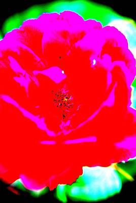 Floral Digital Art Digital Art Digital Art - Pop Art Rose  by Michelle  BarlondSmith