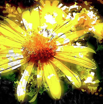 Photograph -  Pop Art Daisy by HH Photography of Florida