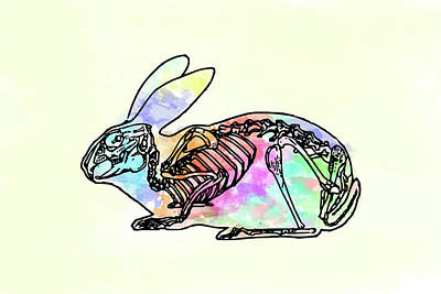 Digital Art - Pop Goes The Bunny by Keshava Shukla