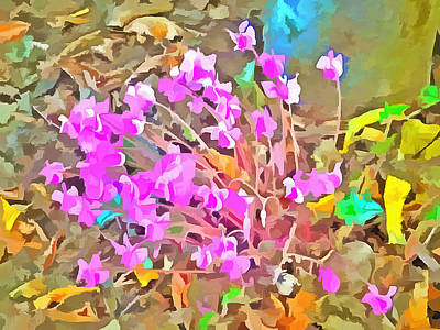 Photograph - Pop Goes The Cyclamen by Dorothy Berry-Lound