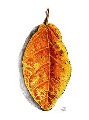 Pop Leaf Yellow Art Print by Ryan Irish