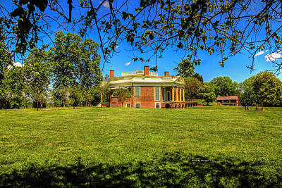 Photograph - Poplar Forest by Dale R Carlson