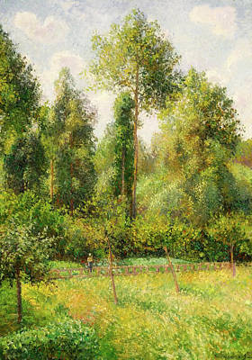 Art Print featuring the painting Poplars - Eragny by Camille Pissaro