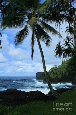Ourjrny Photograph - Poponi Ulaino Mokupupu Maui North Shore Hawaii by Sharon Mau
