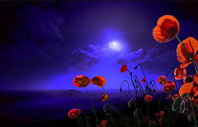 Photograph - Poppies Blue by Igor Zenin