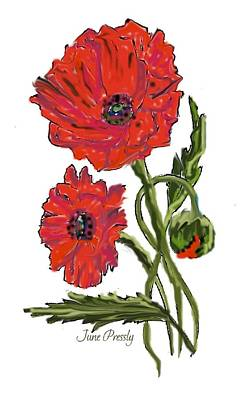 poppies by June Pressly Art Print by June Pressly