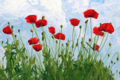 Pattern Painting - Poppies Ca 2017 By Adam Asar by Adam Asar