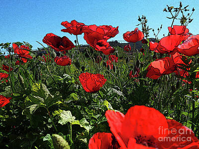 Poppies. Art Print by Don Pedro De Gracia