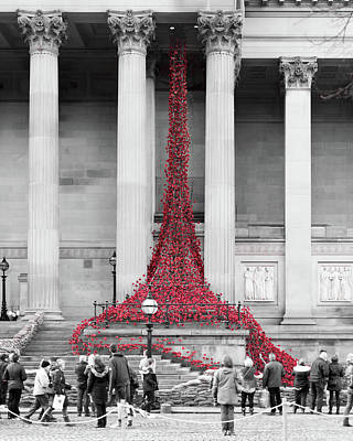 Photograph - Poppies Drape Down St George's Hall Liverpool by Jacek Wojnarowski