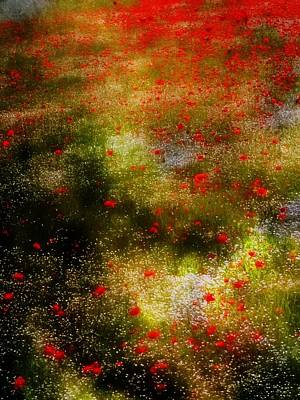 Photograph - Poppies For Remembrance by Dorothy Berry-Lound