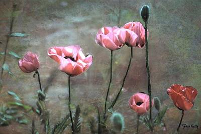 Photograph - Poppies by Fran Kelly