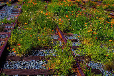 Train Tracks Photograph - Poppies Growing Among The Rails by Garry Gay