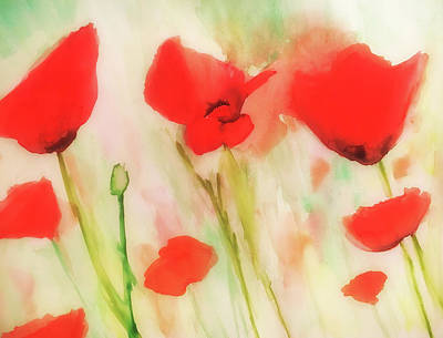 Painting - Poppies In A Field by Angela King-Jones