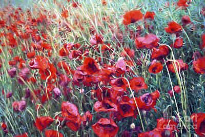 Poppies In Motion Art Print by Jutta Maria Pusl