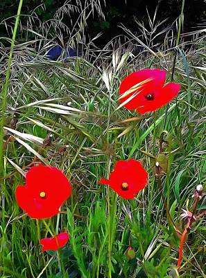 Photograph - Poppies In Tall Grass by Dorothy Berry-Lound