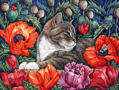 Tabby Cat Photograph - Poppies by Irina Garmashova-Cawton