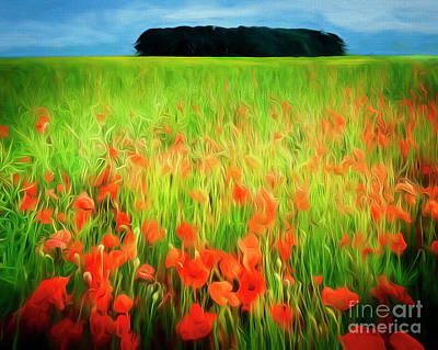 Digital Art - Poppies Of The Cotswolds by Edmund Nagele