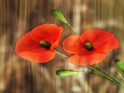 Photograph - Poppies On Barnwood by Dennis Buckman