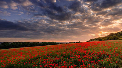 Photograph - Poppies Over The North Downs. by Kelvin Trundle