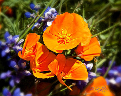 Purple Flowers Digital Art - Poppies  by Patricia Stalter