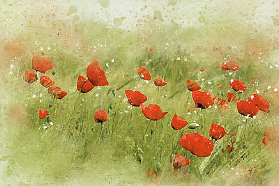 Digital Art - Poppies by Peggy Cooper