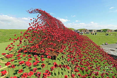 Photograph - Poppies Wave At Fort Nelson Uk by Julia Gavin