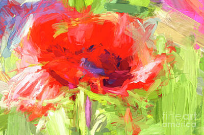 Photograph - Poppy Abstract Photo Art by Sharon Talson