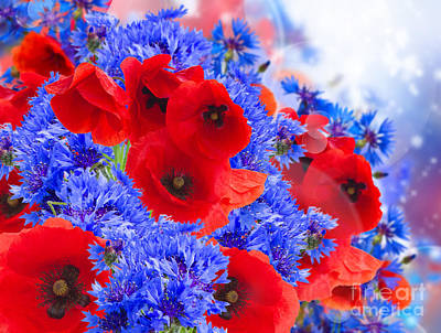Poppy And Cornflower Flowers Art Print by Anastasy Yarmolovich
