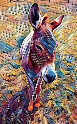 Digital Art - Poppy by Caryl J Bohn