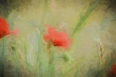 Poppies Field Painting - Poppy Dream by Sharon Lisa Clarke