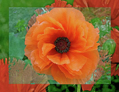 Digital Art - Poppy Fantasy 4 by Lynda Lehmann