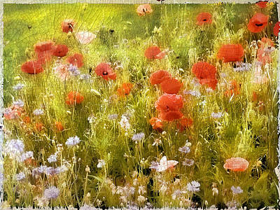 Whimsy Photograph - Poppy Field by Jessica Jenney