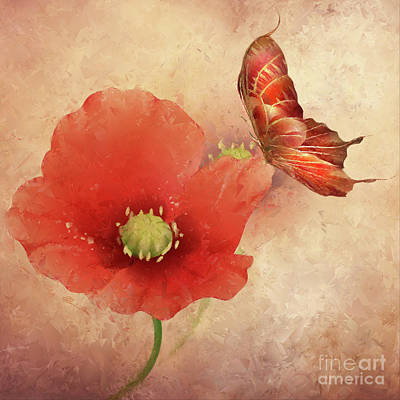 Painting - Poppy Flower And Butterfly by Olga Hamilton