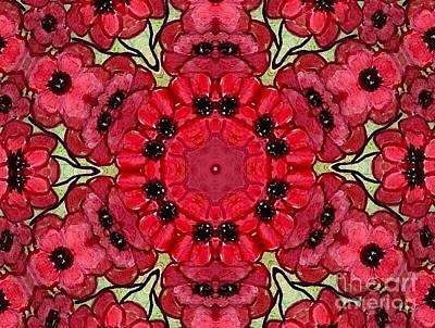 Digital Art - Poppy Flower Explosion by Anne Sands