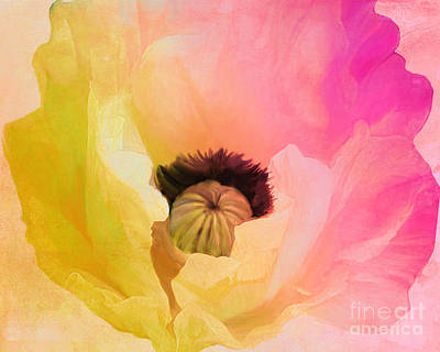 Pink And Yellow Painting - Poppy Gradient Pink by Mindy Sommers