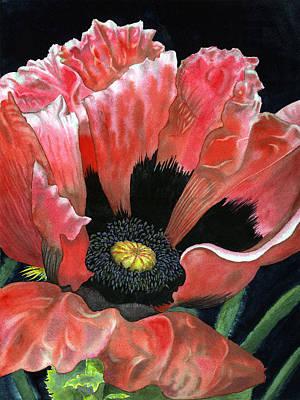 Poppy Art Print by Karen Wright