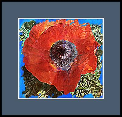 Photograph - Poppy by Lenore Senior